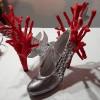 Crazy Shoe